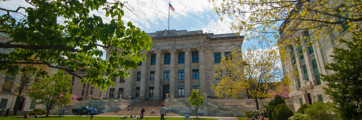 Harvard Medical School - summer on the quad